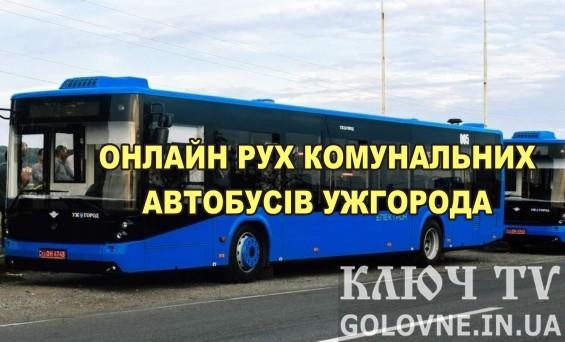 Онлайн рух і місцезнаходження автобусів Ужгорода