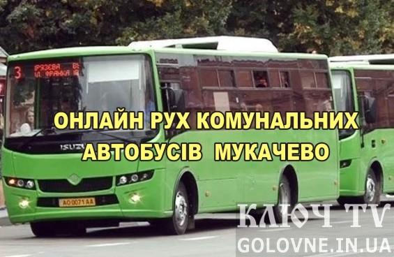 Онлайн рух і місцезнаходження автобусів Мукачево